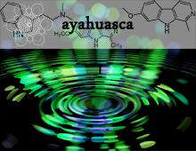 Efeitos da Ayahuasca no cérebro