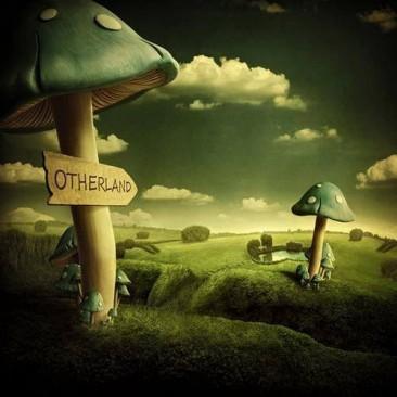 Diversão com cogumelos