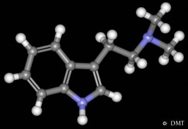 N,N-Dimetiltriptamina?