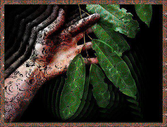 ayahuasca shipibo mareacion