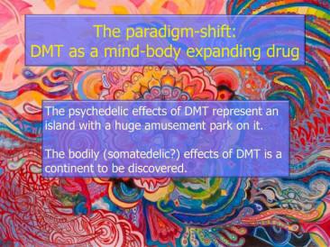 DMT entre a vida e morte