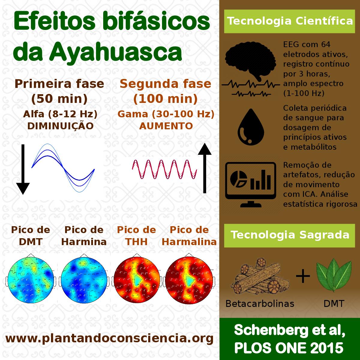 Conhecimento tradicional uma incerta antropologia novo infografico ptbr fb fandeluxe Images